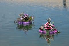 Blommar utsatt på Floraart, trädgårds- utställning för international 52 i Zagreb Royaltyfri Bild