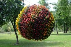 Blommar utsatt på Floraart, trädgårds- utställning för international 52 på sjön Bundek i Zagreb Royaltyfria Bilder