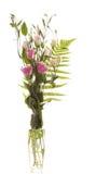 blommar vasen Royaltyfria Bilder