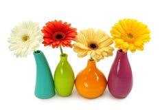 blommar vases Royaltyfri Fotografi