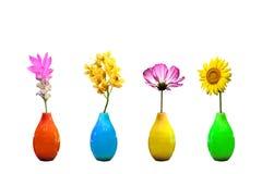 blommar vases Fotografering för Bildbyråer
