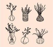 blommar vases Royaltyfri Bild