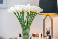 blommar vasewhite Royaltyfri Bild