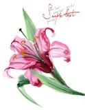 blommar vattenfärg Royaltyfri Bild