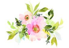 Blommar vattenfärgillustrationen Fotografering för Bildbyråer