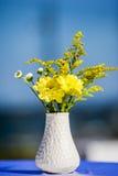 blommar vit yellow för vasen Royaltyfri Bild