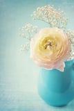 blommar white Arkivbild