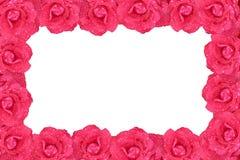 blommaram Arkivfoton