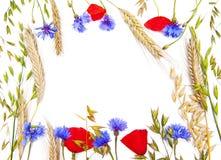 Blommaram Arkivbild