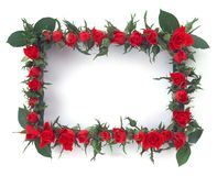 blommaram Royaltyfria Bilder