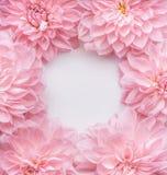 Blommaram för pastellfärgade rosa färger, bästa sikt Orienterings- eller hälsningkort för moderdag, bröllop eller lycklig händels Royaltyfria Bilder