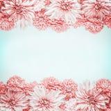 Blommaram för pastellfärgade rosa färger på gränsen - blå bakgrund, bästa sikt Blom- orientering eller åtlöje upp Arkivfoton
