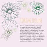 Blommaram, prydnad Kamomillteckning vektor Arkivfoto