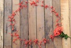 Blommaramar på wood bakgrund Royaltyfri Bild
