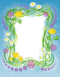 blommaramgräs Arkivbild