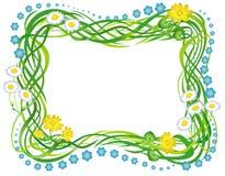 blommaramgräs Arkivbilder