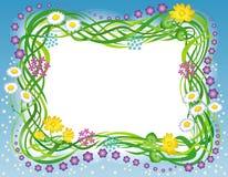 blommaramgräs Royaltyfria Foton