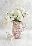 blommaranunculuswhite Royaltyfri Bild
