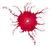 blommared royaltyfri bild