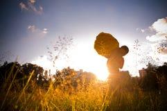 blommasäljare Fotografering för Bildbyråer