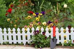 blommas staketblommor Royaltyfria Bilder