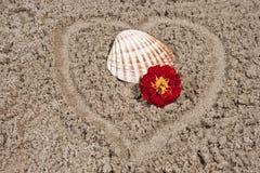 blommaskal Royaltyfri Fotografi