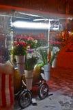 Blommaställning på den snöig natten Arkivfoton