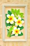 blommastuckatur royaltyfri fotografi