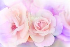 Blommasuddighetsbakgrund Arkivbild