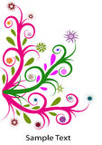 blommaswirl Royaltyfri Bild