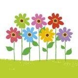 blommaträdgård Royaltyfri Bild