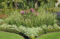 Blommaträdgård från Sanssouci i Potsdam, Tyskland Royaltyfria Bilder