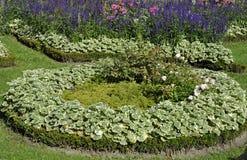 Blommaträdgård från Sanssouci i Potsdam, Tyskland Royaltyfri Bild