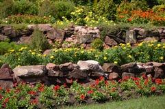 Blommaträdgård i Chachoengsao Thailand arkivfoton