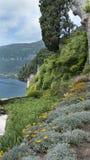Blommaträdgård i kullarna ovanför sjön Como arkivbilder