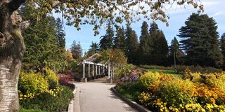Blommaträdgård i Stanley Park arkivfoto