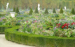 Blommaträdgård i Versailles, Paris, Frankrike Arkivfoton