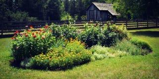 Blommaträdgård med uthuset royaltyfri fotografi