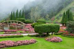 Blommaträdgård och mistbakgrund Arkivbilder