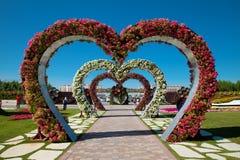 Blommaträdgårdar Dubai Royaltyfri Fotografi