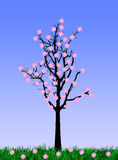 Blommatree Royaltyfria Bilder
