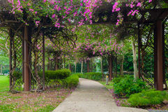 Blommatunnelen parkerar offentligt royaltyfri fotografi