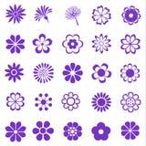 Blommauppsättning Arkivbilder