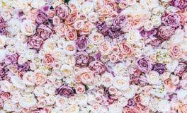 Blommaväggbakgrund med att förbluffa röda och vita rosor som gifta sig garnering, gjord hand - royaltyfria bilder