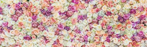 Blommaväggbakgrund med att förbluffa röda och vita rosor som gifta sig garnering, gjord hand - Royaltyfri Fotografi