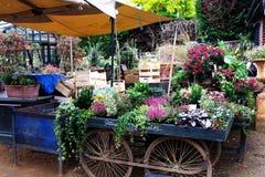 Blommavagn Fotografering för Bildbyråer