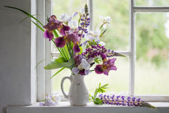 Blommavas inom av fönster Arkivbild