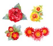 blommavattenfärg Arkivfoto