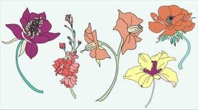 Blommavektorpacke Royaltyfria Bilder