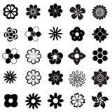 Blommavektoruppsättning Arkivfoton